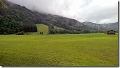 scenery by Aldi